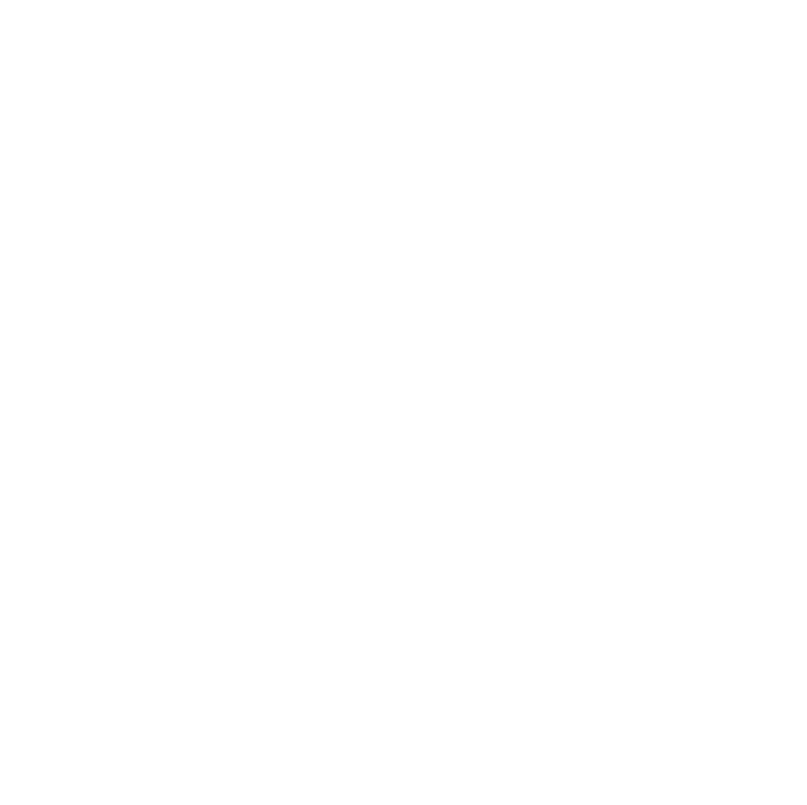 WordPress Tampa Bay